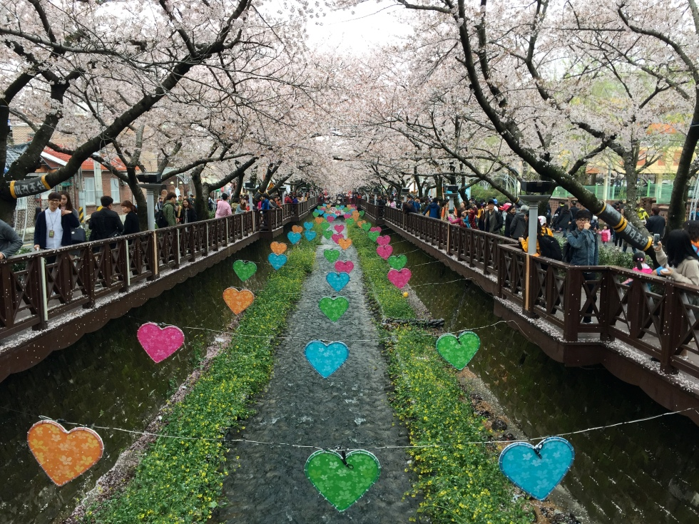 Hearts on Yeojwacheon Stream.